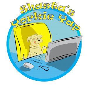 Shasta's Yorkie Yap Logo