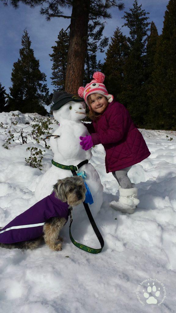 Snowman taking Shasta for a walk and getting a warm hug!