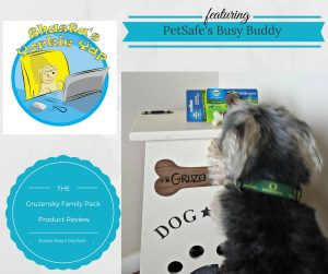 Product Review Busy Buddy by PetSafe