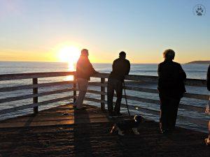 Snapshot Sundays February-Pismo sunset silhouette