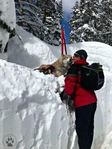 Snapshot Sundays February-Snowshoeing Shasta, Zara and Denton 1