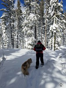 Snapshot Sundays February-Snowshoeing Shasta, Zara and Denton 2
