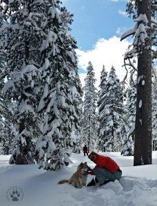 Snapshot Sundays February-Snowshoeing Zara and Deb