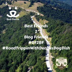 Best Friends 2 Blog Friends 2017