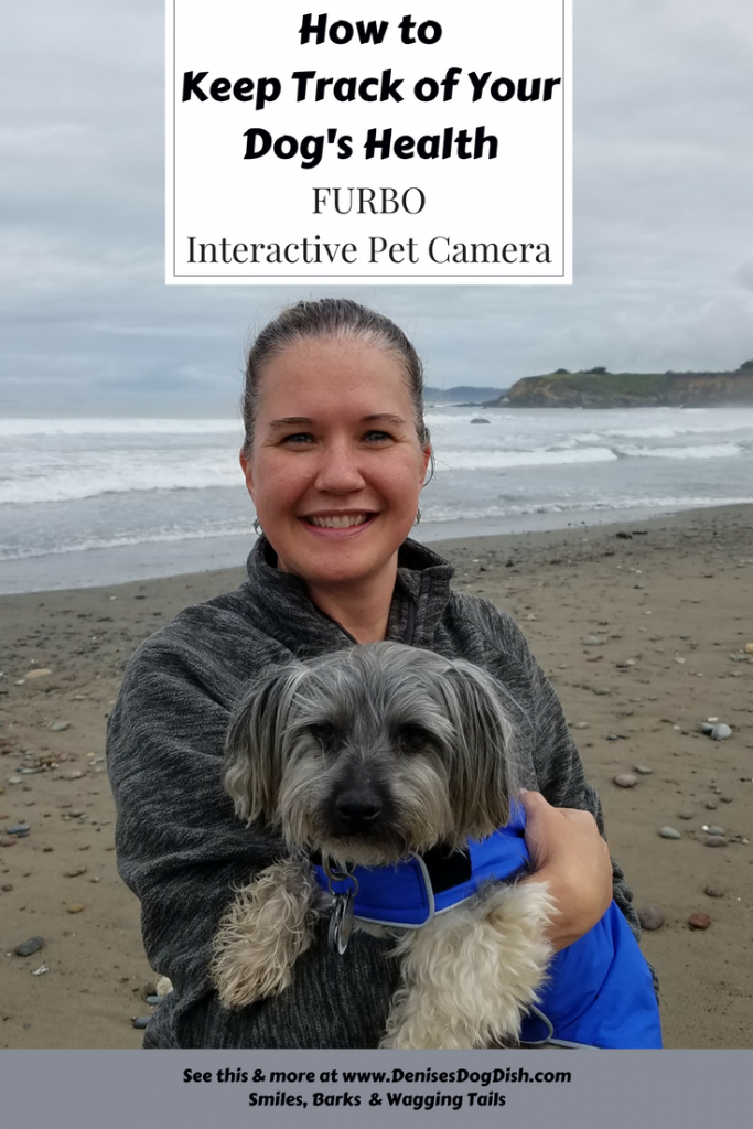 How to Keep Track of Your Dog's Health- FURBO Interactive Pet Camera