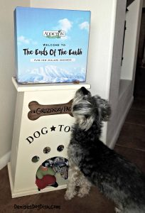 How to choose a dog food-If I knew then what I know now