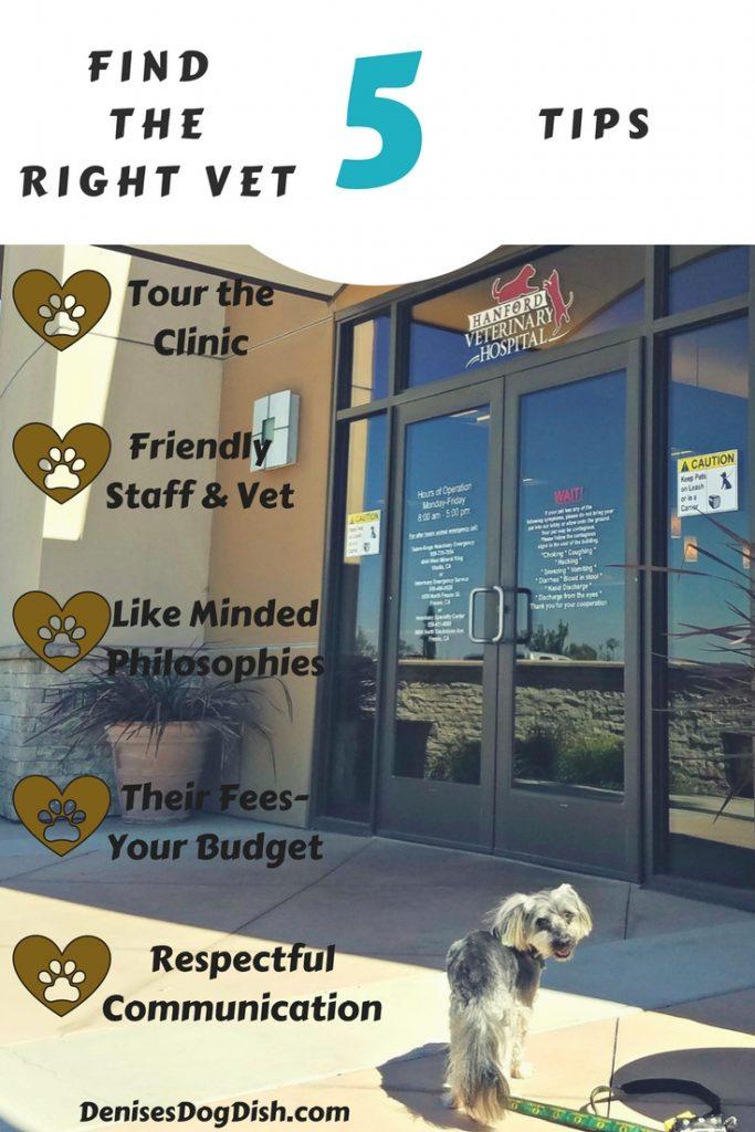 Finding the right vet